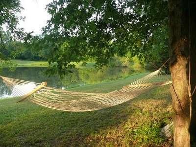 riverside-hammock